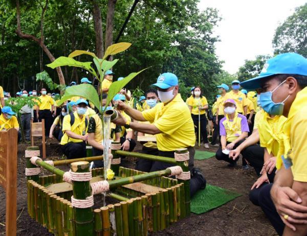 รวมใจไทย ปลูกต้นไม้ เพื่อแผ่นดิน